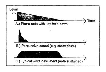 Trình tự của thính giác (The Timeline of Hearing)