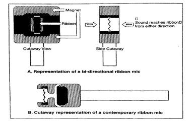 Mô hình định hướng cơ bản của micrô ribbon cổ điển
