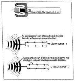Mô hình định hướng cơ bản của micrô động lực