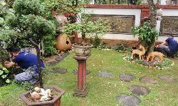 Tư vấn lắp đặt loa sân vườn cho biệt thự, căn Villa
