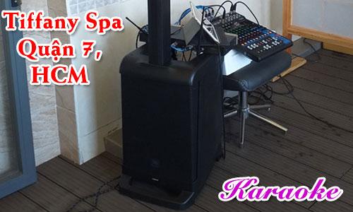 Lắp đặt dàn âm thanh karaoke cao cấp: Massage Tiffany Spa, Quận 7, HCM